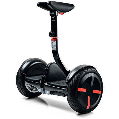 Mini Segway Scooter