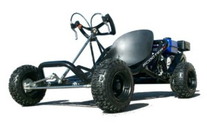 ScooterX Go Kart For Sale